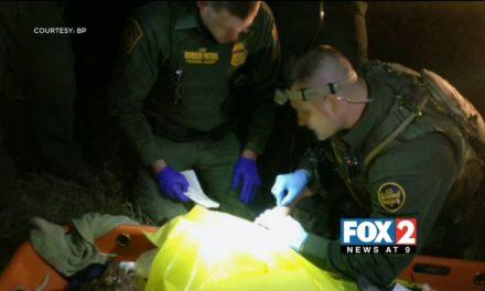 Border Patrol Agents Save Drowning Man