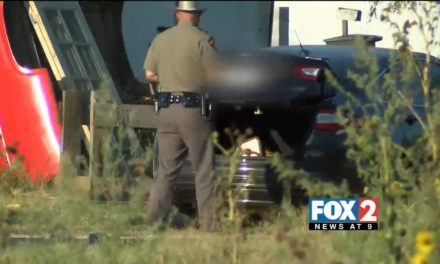 Dramatic High-Speed Chase spans from La Joya to Palmview