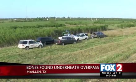 McAllen City Employee Finds Bones, Sparking Investigation