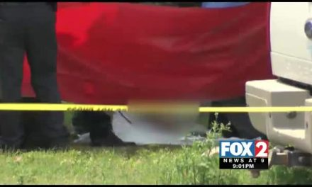 Elderly Man Dies in Tragic Vehicle Accident