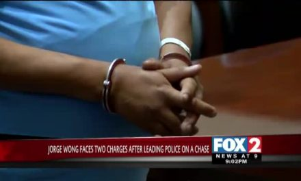 Wong Faces Multiple Charges