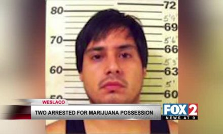 Two Arrested On Marijuana Charges