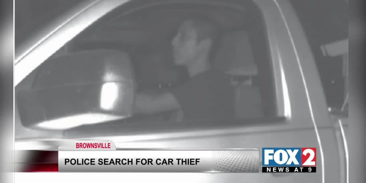 Auto theft agents are looking for the identity of thief