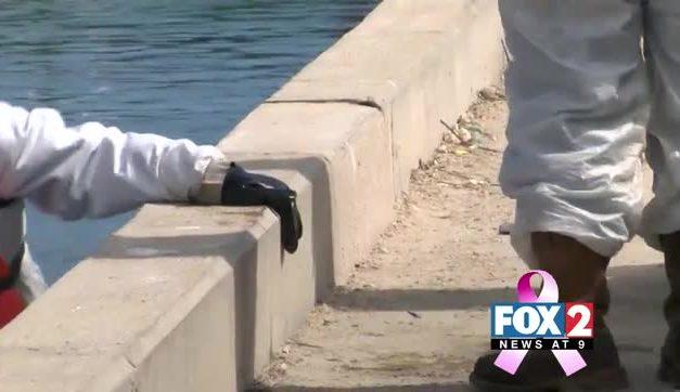 Port Isabel Oil Spill Gets Cleaned Up
