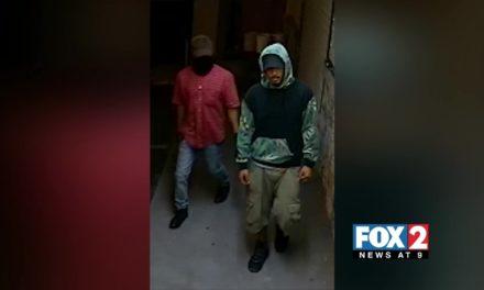 Authorities Search for Burglars