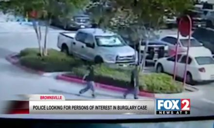 Brownsville Police Search For Two Burglars