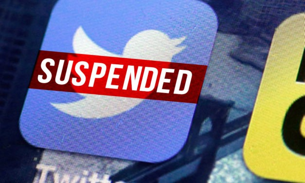 Twitter suspends several alt-right accounts