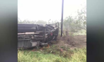 16 Hospitalized After Raymondville Accident