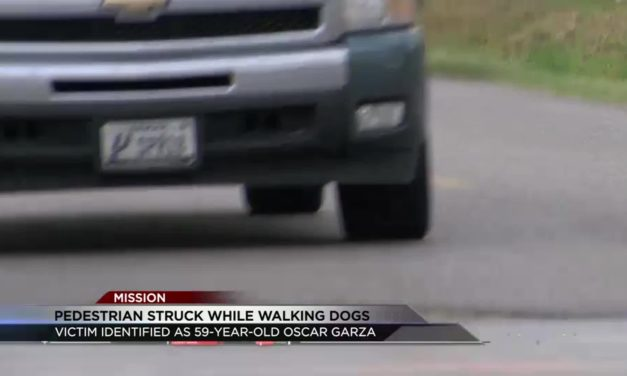 Pedestrian Fatally Struck While Walking Dogs