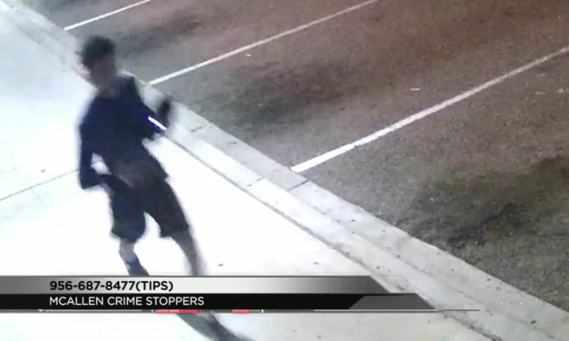 Pet Shop Fire Surveillance Video Release, Arsonist Wanted