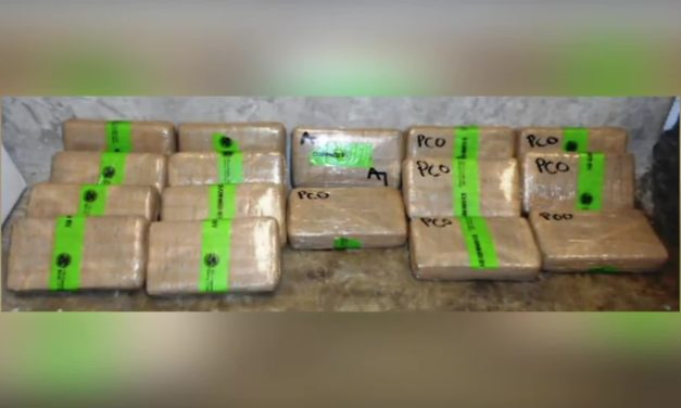 CBP Seizes More than $3k in Cocaine