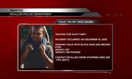 McAllen Police Search for Auto Thief