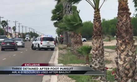 3 captured after foot pursuit in Palmhurst