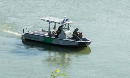 Border Patrol Agents Rescue Drowning Men