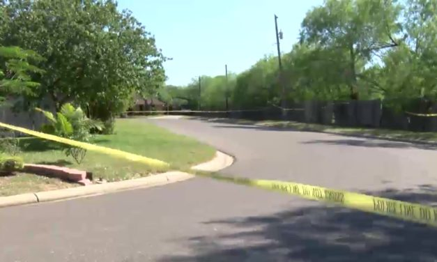 Edinburg Police Investigating Discovery of Human Remains