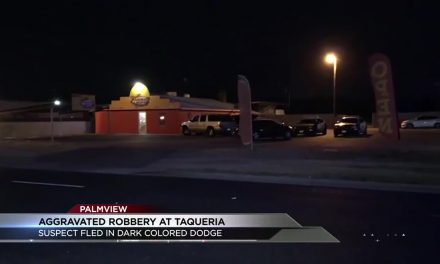 EXCLUSIVE: Aggravated Robbery at Palmview Taqueria