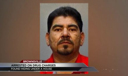 Brownsville Man Found Hiding Under House While Evading Police
