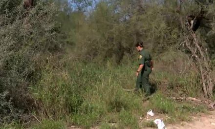 Special Report: BP Sees Spike in Undocumented Crossing