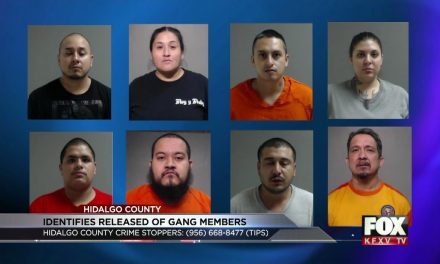 11 Gang Members Netted in 'Palm Harvest' Warrant Sting