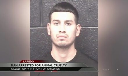 Laredo Man Behind Bars for Animal Cruelty