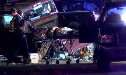 New Details on Edinburg Fatal Accident