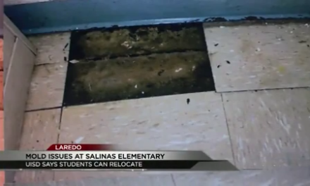 Mold issues at Octavio Salinas Elementary