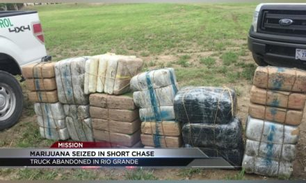 Marijuana Seized after Short Chase and Truck Abandoned in Rio Grande