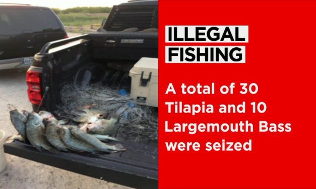 Fishing Thieves Caught