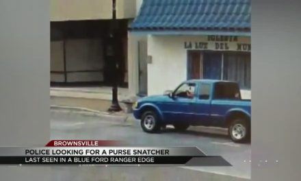 Man Steals Purse From 81-Year-Old Woman