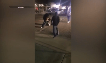 Man Charged With Aggravated Assault After Downtown McAllen Fight
