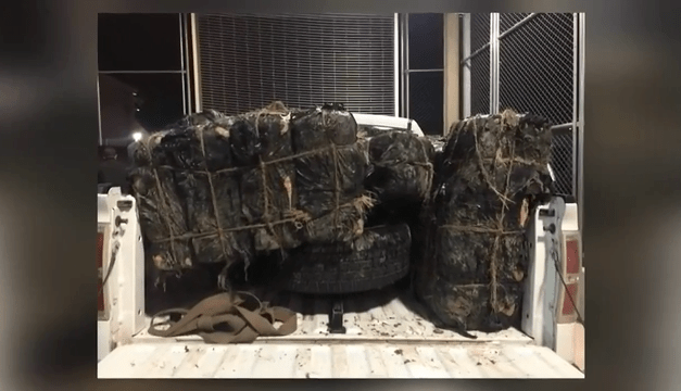 Marijuana valued at $340k Seized After Failed Backpack Smuggling Attempt