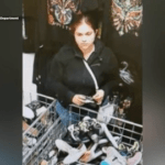 Laredo Woman Wanted For Theft Of Property