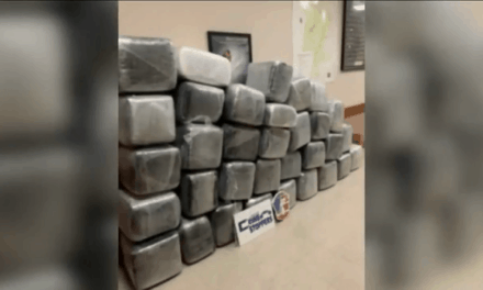 Anonymous Tip Leads To Marijuana Seizure In Laredo