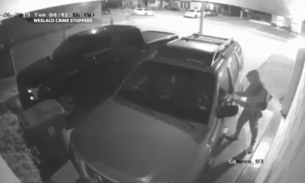 Suspect Caught On Camera Allegedly Stealing From Vehicle