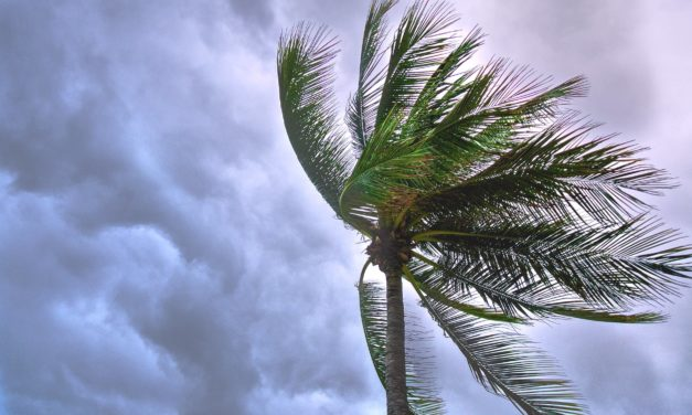 Hurricane Preparedness To-Do Checklist