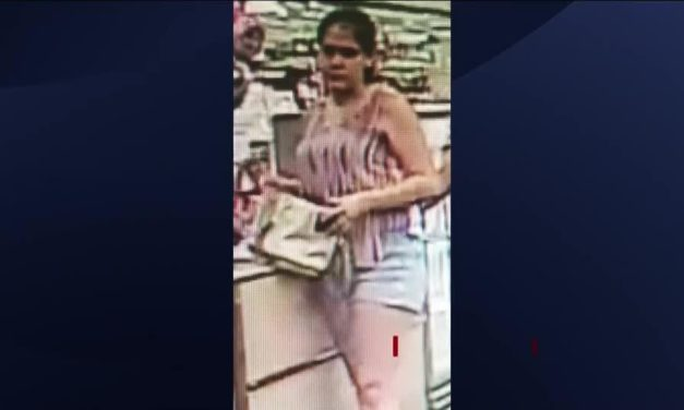 Brownsville Woman Wanted In Connection To Theft Case