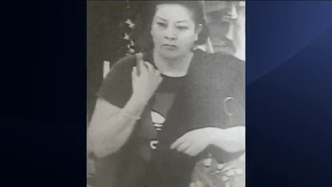 Woman Wanted In Theft Case, Seen Leaving In Volkswagen Jetta