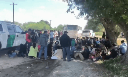 More Than 100 Undocumented Immigrants Detained