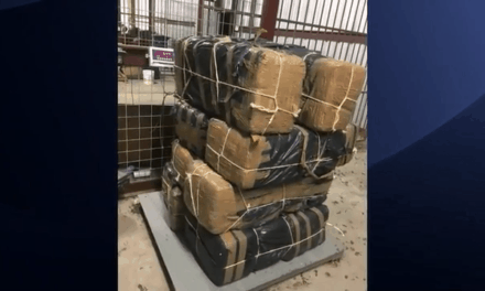 HIDTA Agents Seize Hundreds of Pounds Of Marijuana