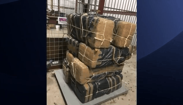 HIDTA Agents Seize Hundreds of Pounds Of Marijuana