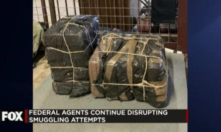 Border Patrol Dismantle Smuggling Attempts