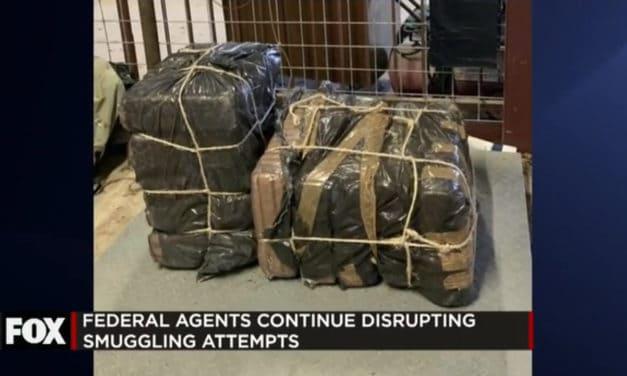 Border Patrol Dismantle Smuggling Attempts