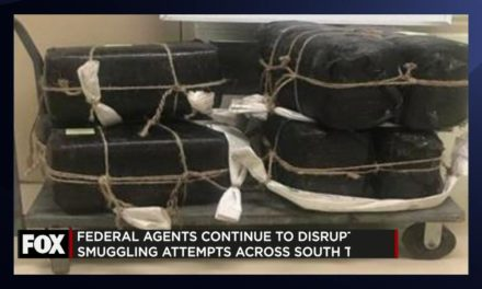 Border Patrol Seize over 800lbs of Marijuana