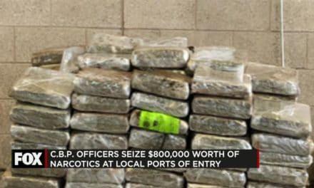 CBP Seize $800,000 in Narcotics