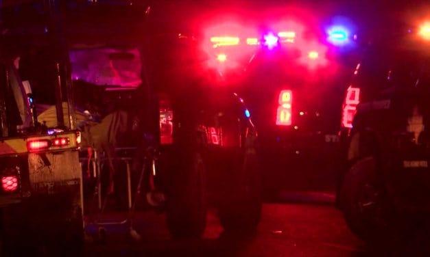 Palmview Hit-and-Run Victim Identified