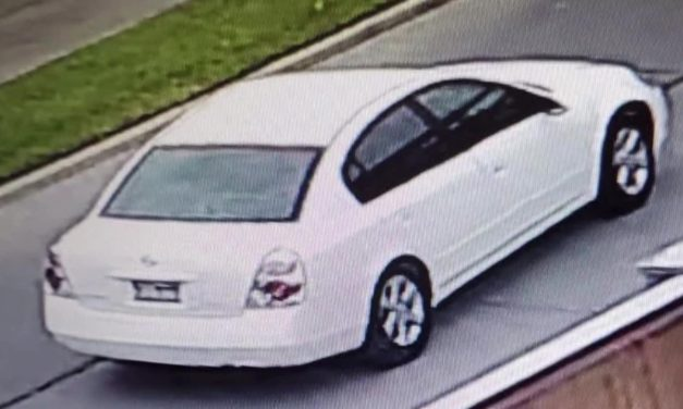 Hit and Run Suspect Sought by Police