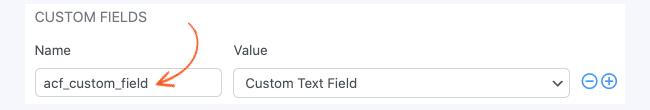 ACF Custom Field Name