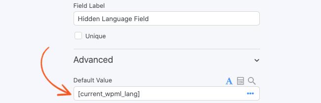 WPML Email hidden field