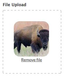 File Upload Default Img