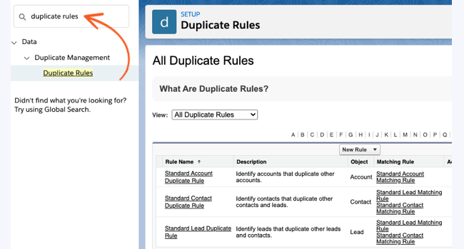 Salesforce Duplicate Rules records